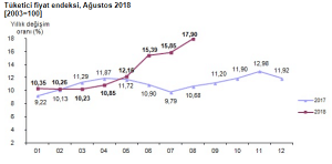2018 Tüketici Fiyat Endeksi