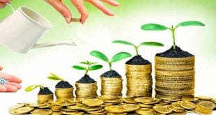 A Tipi Yatırım Fonu