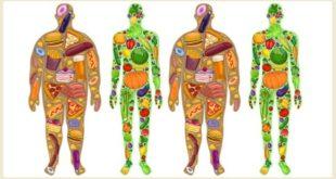 Sağlıklı Kilo Verme Yolları