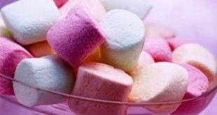 Marshmallow Testi Nedir?