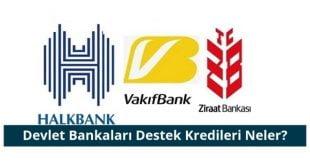 Devlet Bankaları Düşük Faizli Destek Kredileri