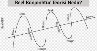 Reel Konjonktür Teorisi